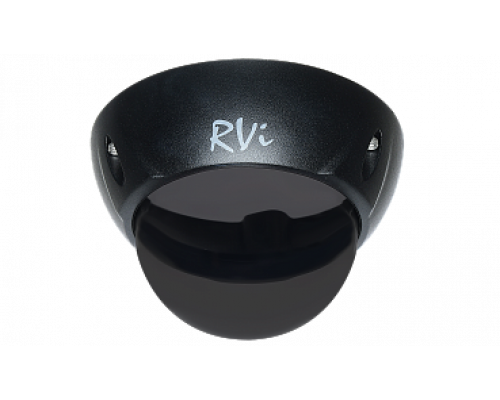 RVi-1DS3b