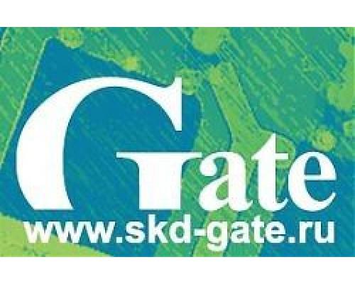 Gate-IP Video